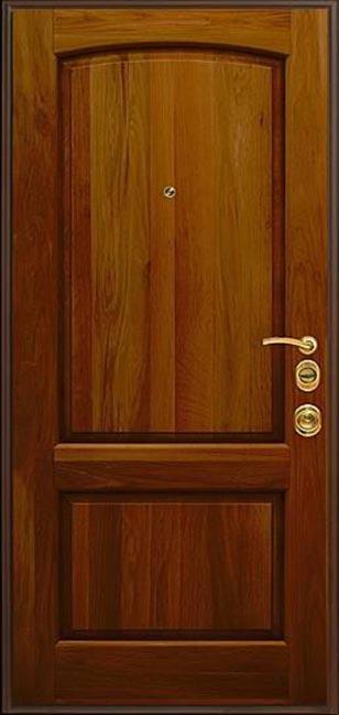 железные дверь из массива дуба